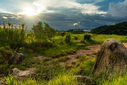 In the city of Barueri there are few places of preserved nature that yield a beautiful landscape. This is certainly one of them. I was lucky to behold a beautiful light.