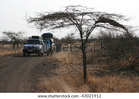 in the ethiopian desert - stock photo