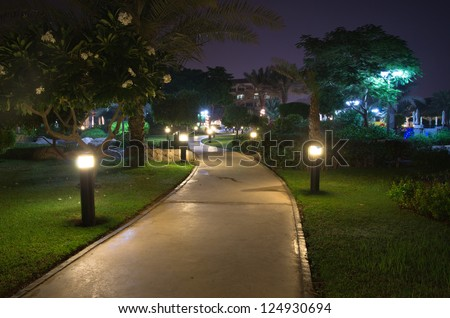 In the garden at night