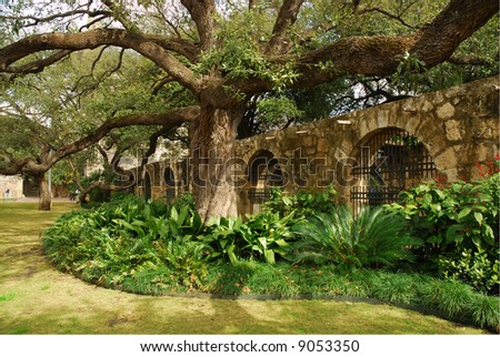In the garden of Alamo, San Antonio, Texas