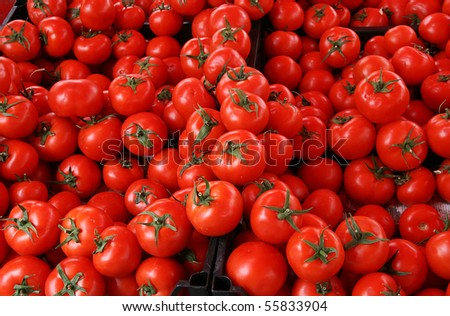 in the market in Turkey - Red tomatoes