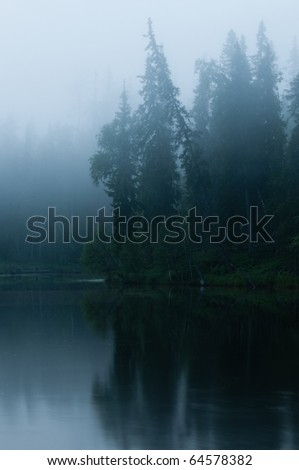 in the mist lake and forest