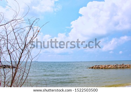 In the morning, the sky was bright blue with white fluffy clouds, clear sea, clear rocks, clear a single large tree on the brown sand, with waves running towards the beautiful shore.