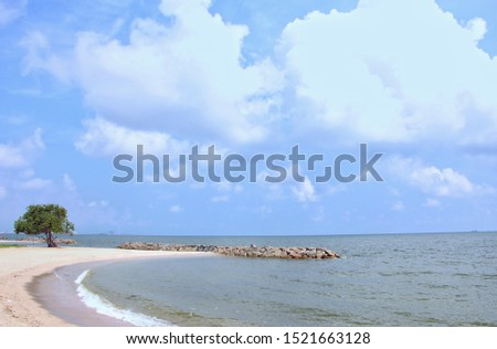 In the morning, the sky was bright bluue with white fluffy clouds, clear sea, clear rocks, clear a single large tree on the brown sand, with waves running towards the beautiful shore.