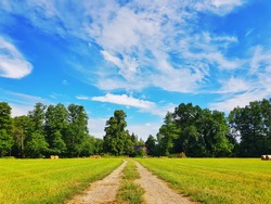In the nature of Brandenburg, beautiful meadows in Germany
