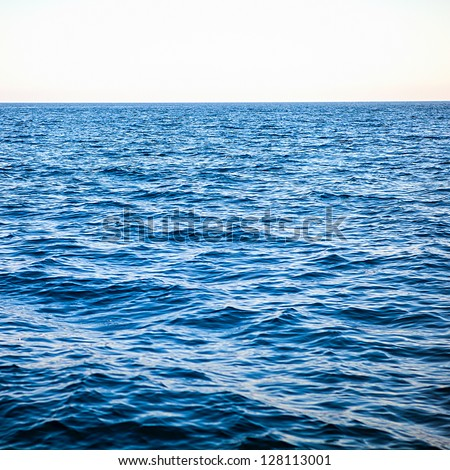 In the open tropical sea