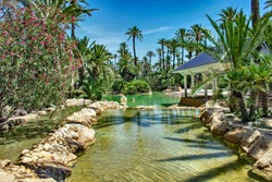 In the Park El Palmeral you can enjoy beautiful landscapes with palm trees lakes and bridges for the enjoyment of visitors, Alicante Spain