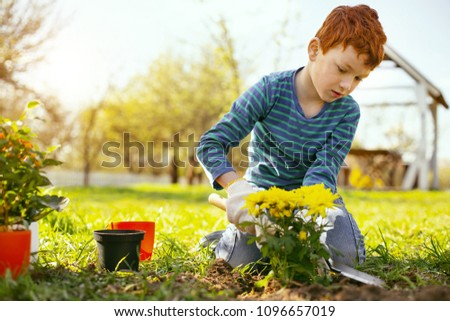 In the park. Nice red haired boy sitting on the ground and planting flowers in the park #1096657019