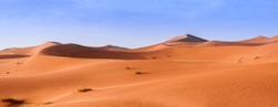 In the Sahara Desert, sand dunes to the horizon, Morocco, Africa. / Sand Dune in the Sahara