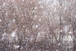 In the spring, unexpectedly heavy snow began to fall like in winter, abundant thick flakes cover the sky  landscape. Aerial photo, drone quadrocopter. For digital image processing, post-processing