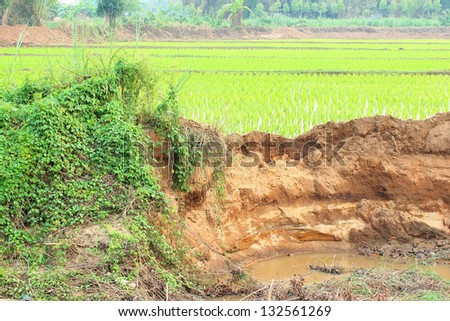 In the village and section of soil. Erosion due to water erosion