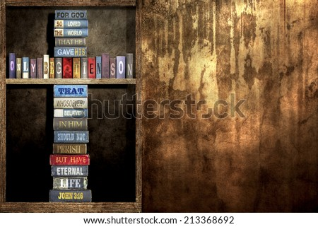 In wall Bookshelf and The World John 3 16