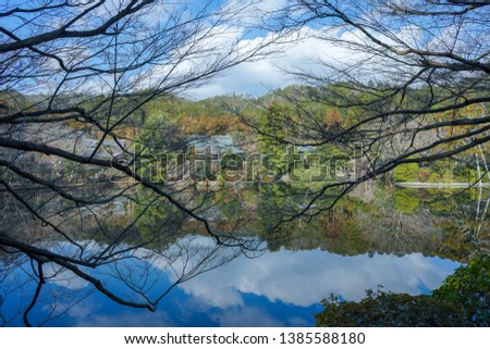 In winter, Ryoanji (a famous ancient Japanese temple in Kyoto), large reflecting pond, the blue sky and white clouds and trees in the distance are reflected in the pool, with branches on both sides. #1385588180