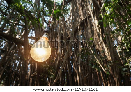Incandescent lamp on the background of trees