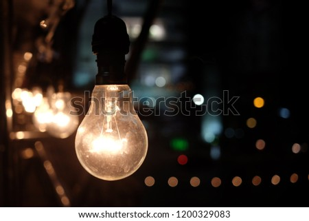 incandescent light bulb /incandescent lamp /incandescent light globe