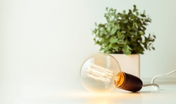 incandescent light bulb with tungsten filaments on white background. Save the energy