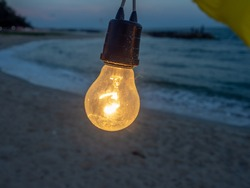 Incandescent light bulbs hanging on the beach by the sea.