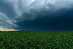 Incoming Derecho moments before it hits small town in the Midwest.  August 10th, 2020.  Peru, Illinois, USA