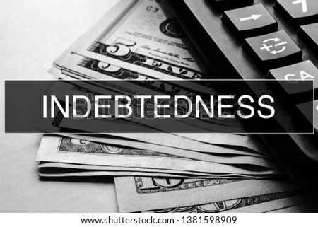 Indebtedness Closeup Concept. Business. Indebtedness text at Dollar Banknote.