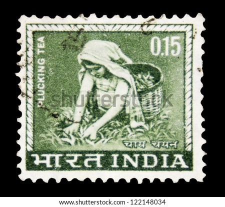 "INDIA- CIRCA 1965: A stamp printed in India shows image of tea pickers, with the inscription ""Plucking tea"", from the series ""Definitive stamps"", circa 1965."