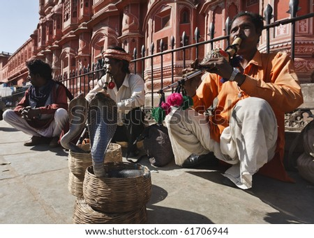 India. Rajasthan, Jaipur, snake charmers make two king cobras (Ophiophagus hannah) dance in front of the Winds Palace