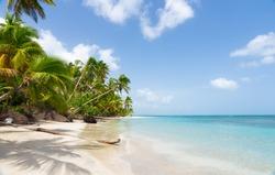 India sea beach. A beautiful view of the sea beach on a sunny summer day. India beach