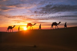 Indian cameleers (camel driver) bedouin with camel silhouettes in sand dunes of Thar desert on sunset. Caravan in Rajasthan travel tourism background safari adventure. Jaisalmer, Rajasthan, India