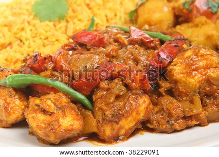 Indian chicken curry with rice and vegetable - stock photo