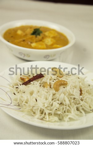 Indian Curry and Rice #588807023