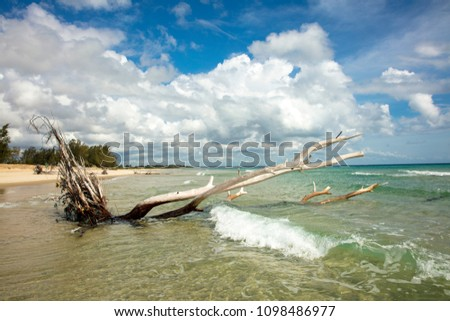 Indian ocean coastline and beaches of Mozambique - Pomene National Reserve