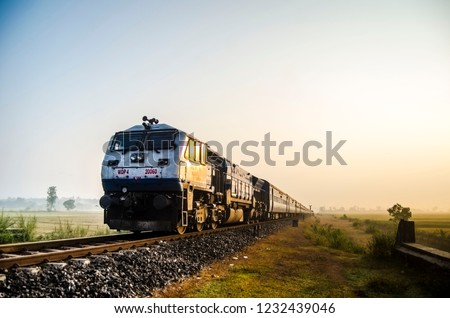 indian railway train on paddy fields