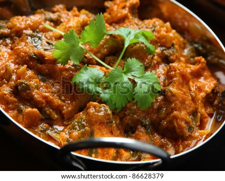 Indian saag (spinach) masala curry. Shallow DoF, sharp focus on coriander leaves.
