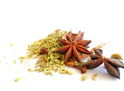 indian spices isolated over white background.star anise,fennel seeds,cinnamon,cloves,cardamom and cous cous placed over white backdrop.image of indian spices.display image for aromatic fresh spices.