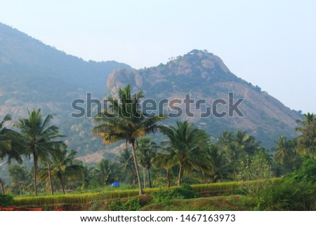Indian Village Sceneries  (Travel Shoot) #1467163973