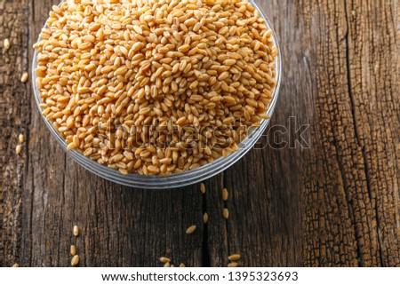 indian wheat grain ,  Wheat grain in bowl