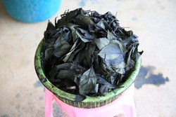 Indigo leaf after ferment then use to dye fabric to blue color.