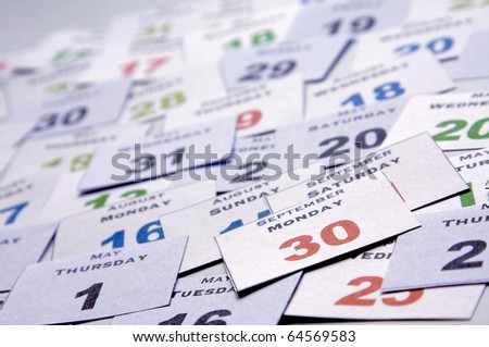 Individual blades of a day calendar - stock photo