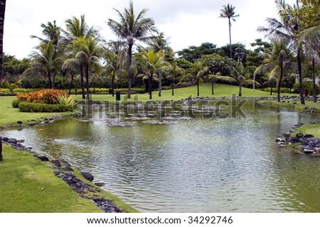Indonesia, Bali Island, Nusa Dua holiday resort. Beautiful grove with palm trees and pond.