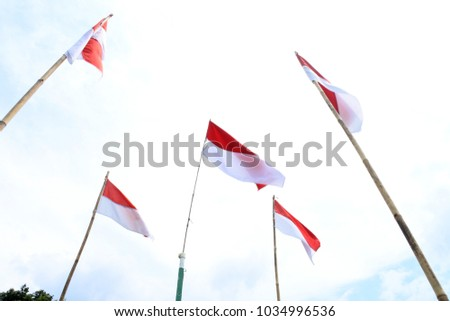 Indonesian flags flutter #1034996536