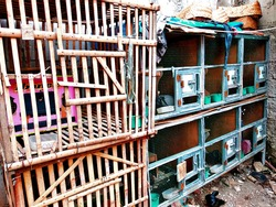 Indonesian tradisional bird cage ,.Made with bamboo material