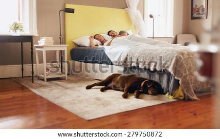 Indoor shot of dog lying on floor in bedroom. Young couple sleeping comfortably on bed.