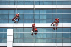 Industrial climbers wash the skyscraper glazing. High altitude maintenance works
