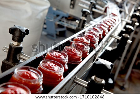 industrial production of tomatoes and tomato paste