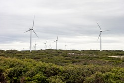 Industrial wind farm with a lot of turbines in the Albany Wind Farm, Western Australia during overcast weather