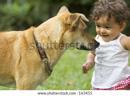 Infant and family dog, staring at each other