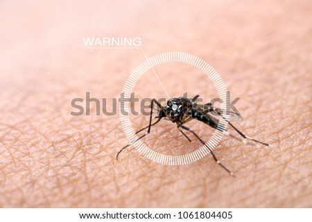 Infographics Circles and warning Mosquitoes are spread on human skin to suck blood. People who get mosquitoes or mosquito bites. Will cause malaria disease. Mosquitoes are a dangerous carrier.