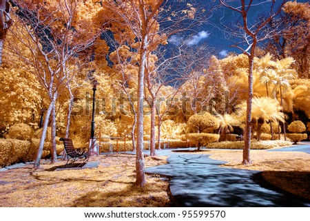 infrared color photo