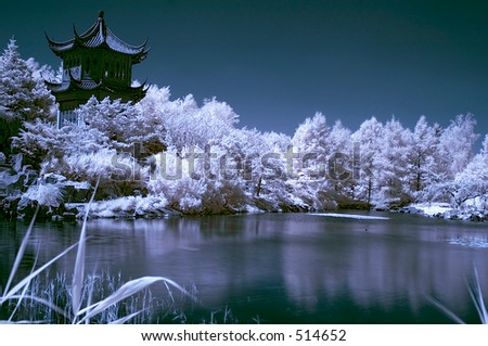 infrared landscape 1  - japanese garden in Montreal Canada -  natural grainy picture