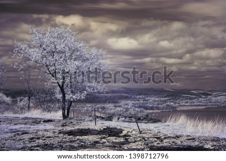 Infrared photography. Top of Hook Mountain. View on Hudson River