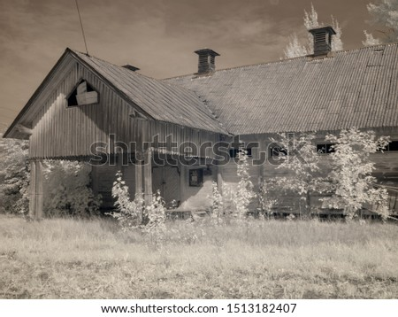 infrared photography with a view house surrounded by mysterious white trees, a picture made with a specially designed infrared camera